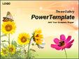 가을분위기의 꽃과 나비 템플릿_애니형_396TGp