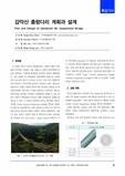 감악산 출렁다리 계획과 설계 (Plan and Design of Gamaksan Mt. Suspension Bridge)