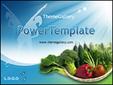 유기농야채의 건강식단 템플릿_1194TGp