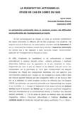 LA PERSPECTIVE ACTIONNELLE: ETUDE DE CAS EN COREE DU SUD
